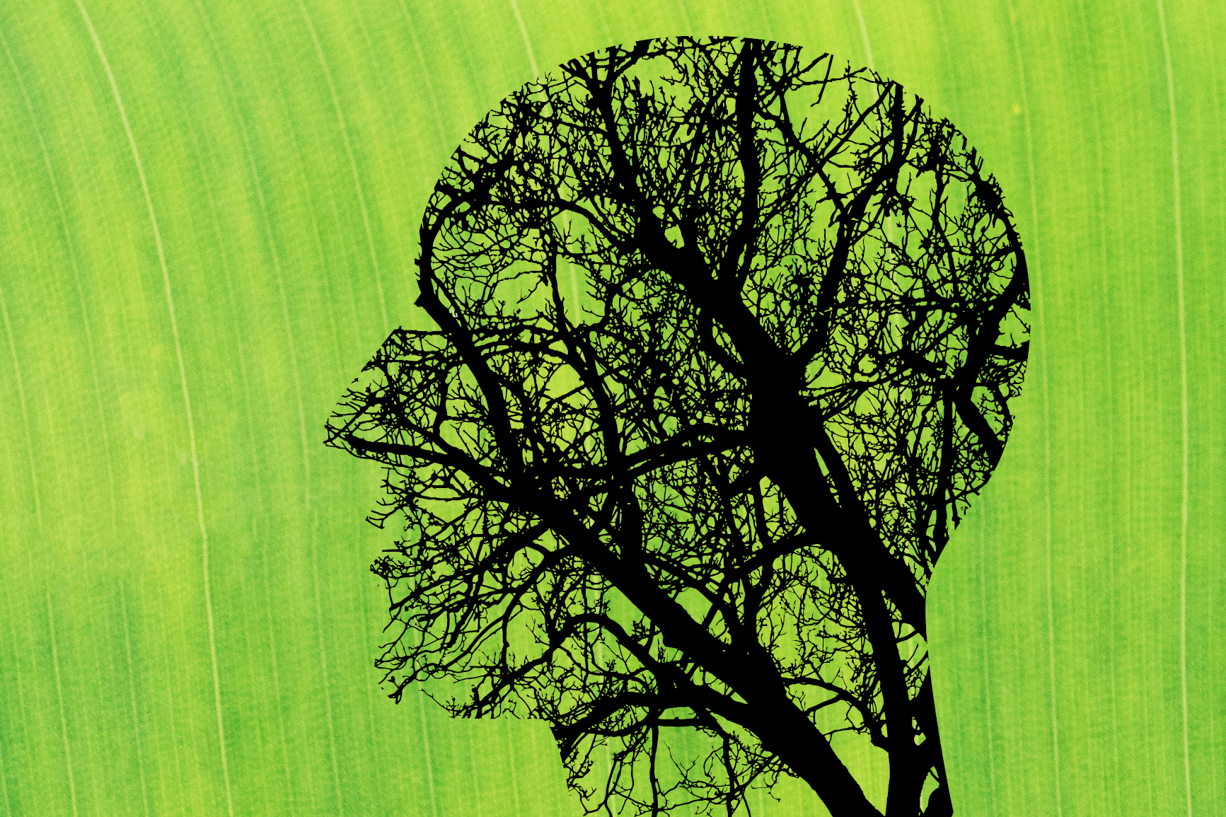Green background with human head profile made of tree branches