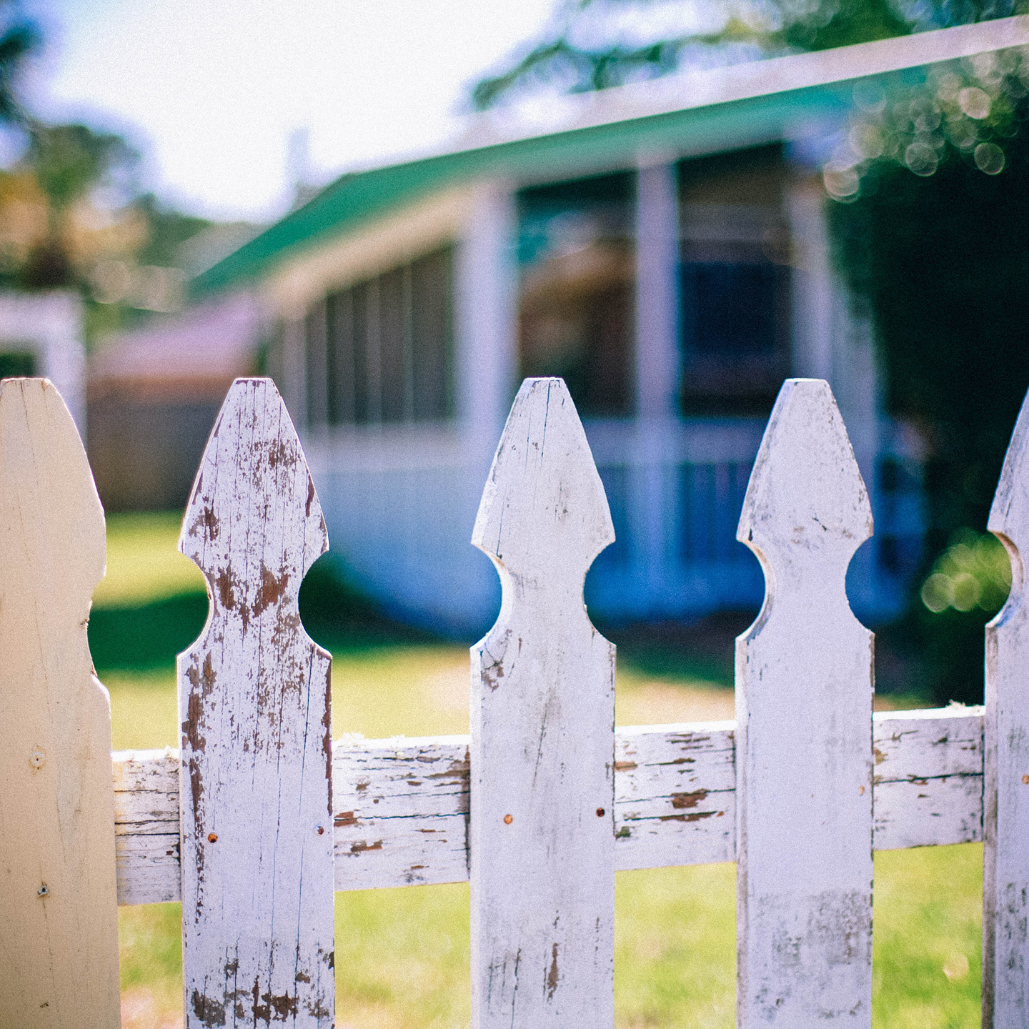 The Backyard Event Image - photograph of picket fence with yard in background